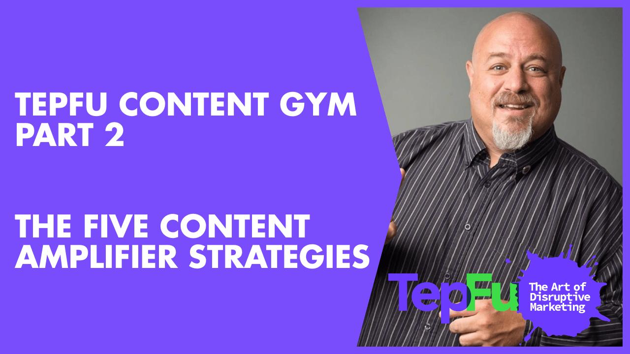 TepFu Content Gym Part 2 – The Five Content Amplifier Strategies